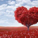 Para vivir con Amor, trabajar con Amor, educar con Amor, morir con Amor…